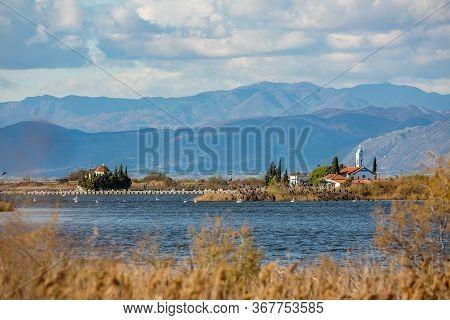 Selective Shallow Focus On Huge Flock Of Cormorants Near Monastery Of St. Nicholas Built On Lake Vis