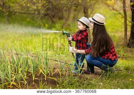 Smiling Woman Gardener With Little Boy Watering Vegetable Garden With Hose. Happy Family Spending Ti
