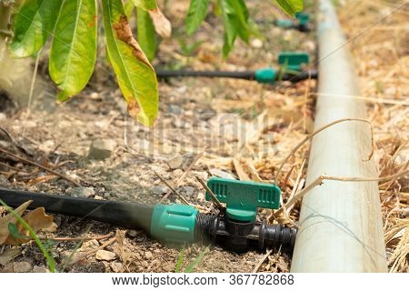 Pvc Ball Valve On Ground For Watering Systems.drip Ball Valve For Planting.