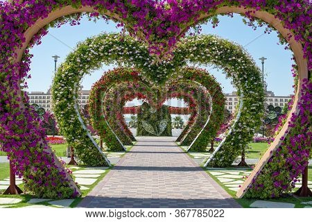 Dubai Miracle Garden, Corridor Of Heart-shaped Floral Arches, Purple, White And Red Flowers