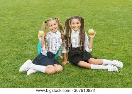 Meal Break Can Be Fun. Happy Kids Hold Apples On Green Grass. Little Girls Enjoy School Break Outdoo
