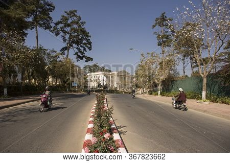 Da Lat, Lam Dong, Vietnam - February 20, 2011: Vietnamese People Driving Scooters In A Clean Avenue