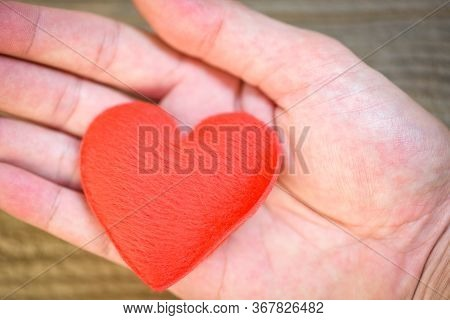 Health Care Love Organ Donation Family Insurance World Health Day Hope / Hands Holding Heart Give Lo