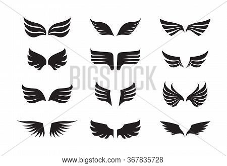 Wing Feather Set. The Winged One Is Black, The Stylized Emblem Of Feathered Eagle, Dragon In Fantasy
