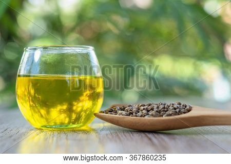 Hemp Oil In A Glass Bottle And The Seeds In A Wooden Spoon The Idea Of Using Oil Extracted From Cann