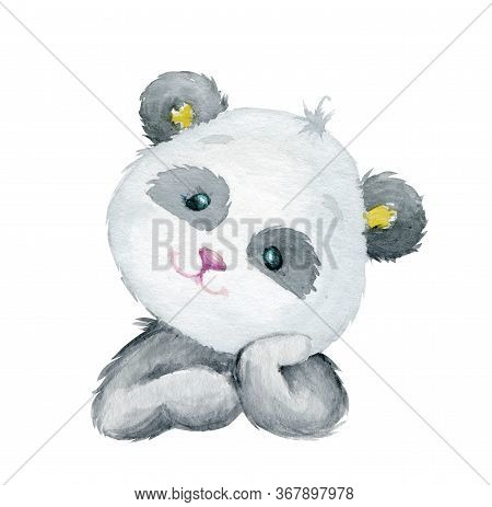 Panda, You Should. Watercolor Drawing Of A Cute Panda On An Isolated Background, High Resolution.