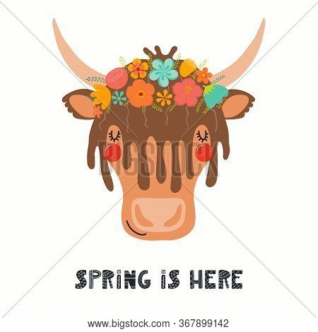 Hand Drawn Vector Illustration Of A Cute Yak Face In A Flower Crown, With Lettering Quote Spring Is