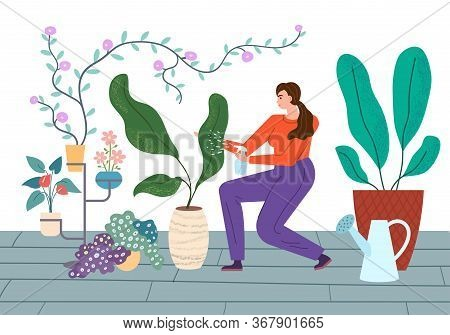 Houseplants Care Vector Illustration. Young Woman Carefully Sprays Plants In House.