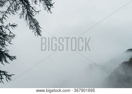Ghostly Alpine View Through Branches And Low Clouds To Beautiful Rockies. Dense Fog Among Giant Rock