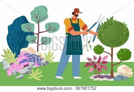 Gardener Cuts A Tree. Pruning Bushes And Garden Maintenance Vector Illustration. Man Cuts The Leaves