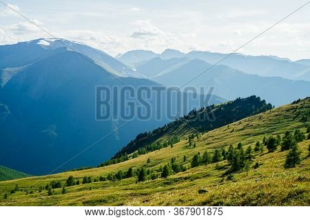 Beautiful Scenic View To Green Forest Valley And Great Snowy Mountains Far In Sunny Day. Awesome Alp