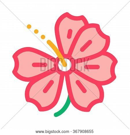Hibiscus Flower Icon Vector. Hibiscus Flower Sign. Color Symbol Illustration