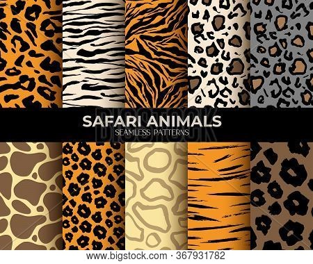 Animal Fur Seamless Pattern Backgrounds, Vector Set Of Leopard, Tiger, Zebra And Giraffe Skin Print.