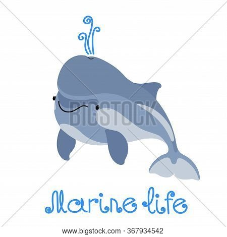 Young Cute Funny Grey Dolphin With Baby Face, Smart Marine Animal, Smile Emotion, For Logo Or Emblem