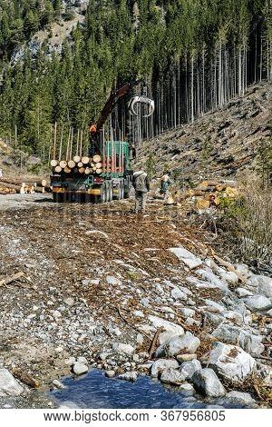 Calamity Logging In Demanovska Valley, National Park Low Tatras Mountains, Slovak Republic. Deforest