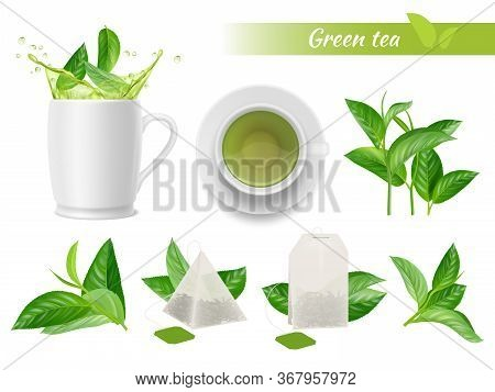 Hot Tea Realistic. Green Leaves Cups Water Splashes Aromatic Green Tea Tags Vector Advertizing Set.