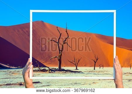 Wooden frame held by children's hands. Huge orange dunes and dry trees in dry lake Sussussflay. Grand trip to Namibia, Namib Naukluft desert. The concept of exotic and photo tourism