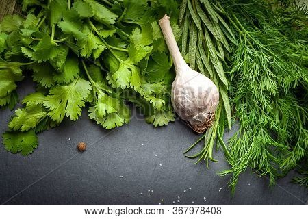 Garlic And Fresh Herbs On A Black Slate Stone. Organic Garlic And Fresh Green Herbs. Fresh Spices Fo