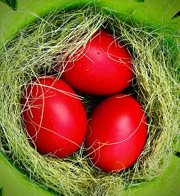 Red Colored Easter Eggs In A Green Basket With Green Grass Close Up Shot