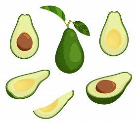 Fresh Avocado Illustration Set. Stock Vector. Whole Avocado With Leaves, Half And Slice Avocado. Iso