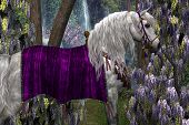 Portrait of a white Arabian stallion in fancy saddle and bridle with purple Wisteria flowers in the background. poster