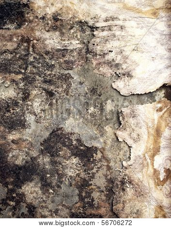 Old moldy grunge stained paper on wall