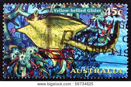 Postage Stamp Australia 1997 Yellow-bellied Glider, Possum