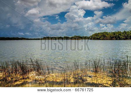 Everglades Lake
