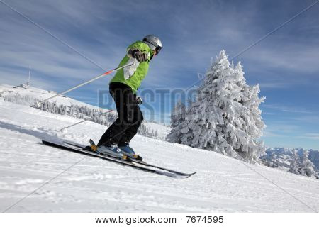 female skier with snowy trees