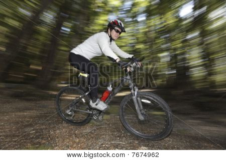 Female Cyclist In Forest