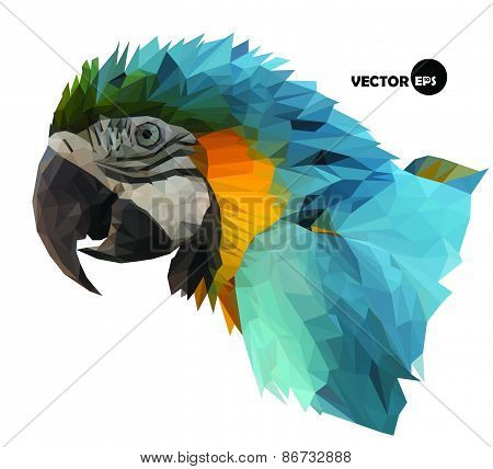 colorful macaw parrot`s head visual identity in low polygon style on white background, vector illust