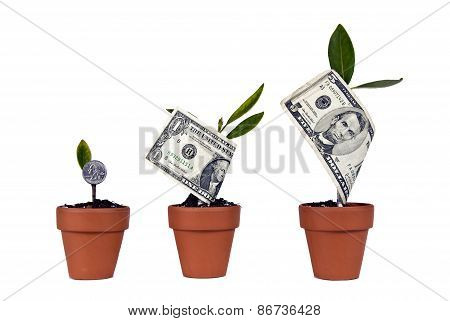 Watch Your Money Grow Concept