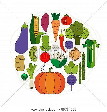 Fresh Vegetables Concept