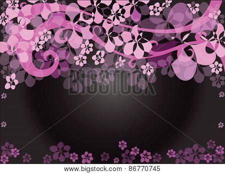 Flower Pink Background Black
