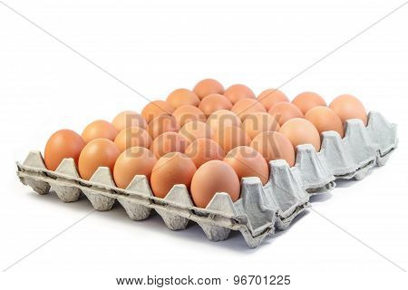 Group of fresh eggs in paper tray on white background