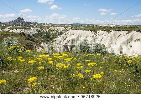 Rock formations of Cappadocia near Uchisar