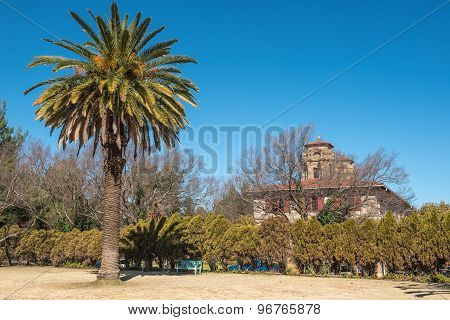 Palm Tree And Bench Next To The City Hall In Bloemfontein