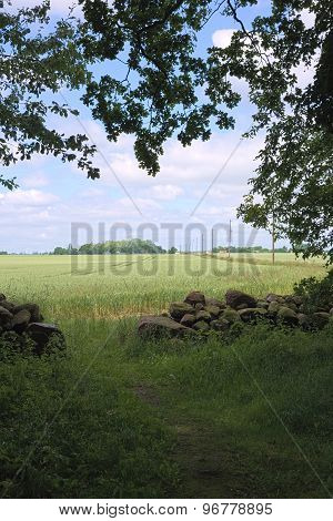 View From Forst Poggendorf