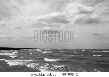 Shore In Black And White Photo