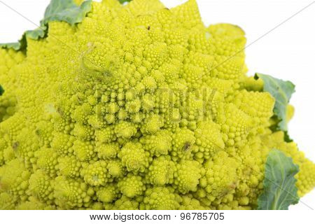 Closeup of Romanesco broccoli
