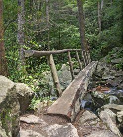 Log Footbridge, Great Smoky Mountains National Park