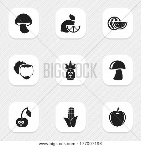 Set Of 9 Editable Food Icons. Includes Symbols Such As Maize, Cep, Watermelon And More. Can Be Used For Web, Mobile, UI And Infographic Design.