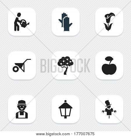 Set Of 9 Editable Gardening Icons. Includes Symbols Such As Farmer, Streetlight, Handcart. Can Be Used For Web, Mobile, UI And Infographic Design.
