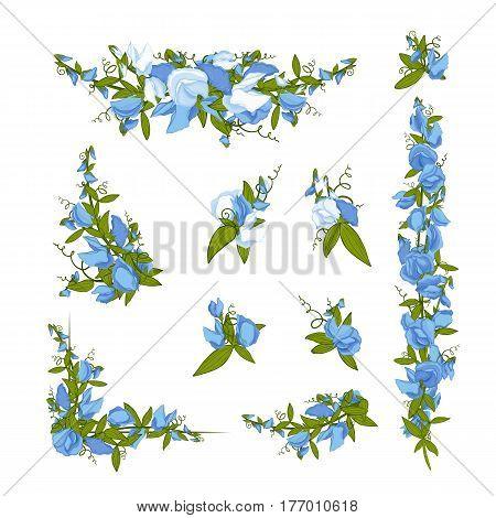 Flowers bouquet - Sweet pea (Lathyrus odoratus). Hand drawn vector illustration.