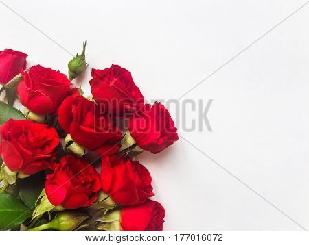 Bunch of small beautiful red rose flowers isolated on white background. Romantic gift concept for Birthday or any other holiday. Flat lay top view