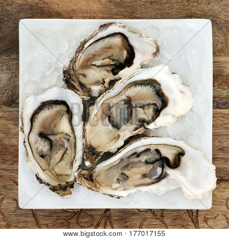 Oyster shellfish on crushed ice on a square porcelain plate on wooden background.