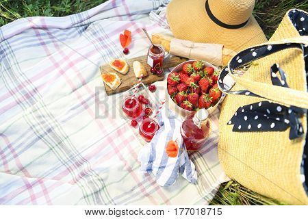 Basket sandwiches plaid and juice in a poppy field. Vintage tender background. Romance love date
