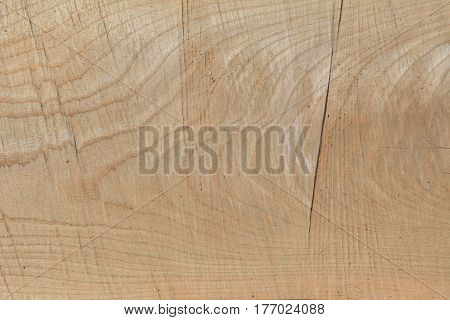 A close up of the surface of wood.