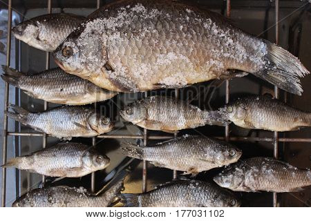 Picture fish big and small crucian carp which are dried on a grate with salt