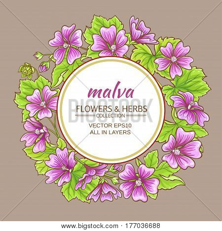 malva flowers vector frame on color background